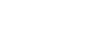 Wissmed logo